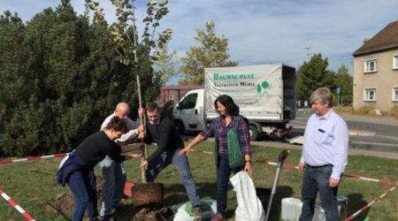 Baumpflanzung Lausitzer Rundschau - Frank Claus