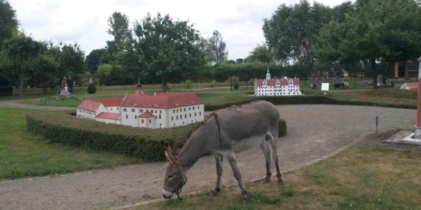 Streichelsoo Miniaturenpark