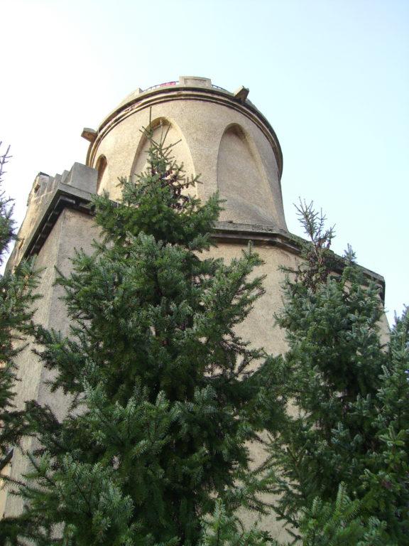Wasserturm Biehla im Nadelkleid